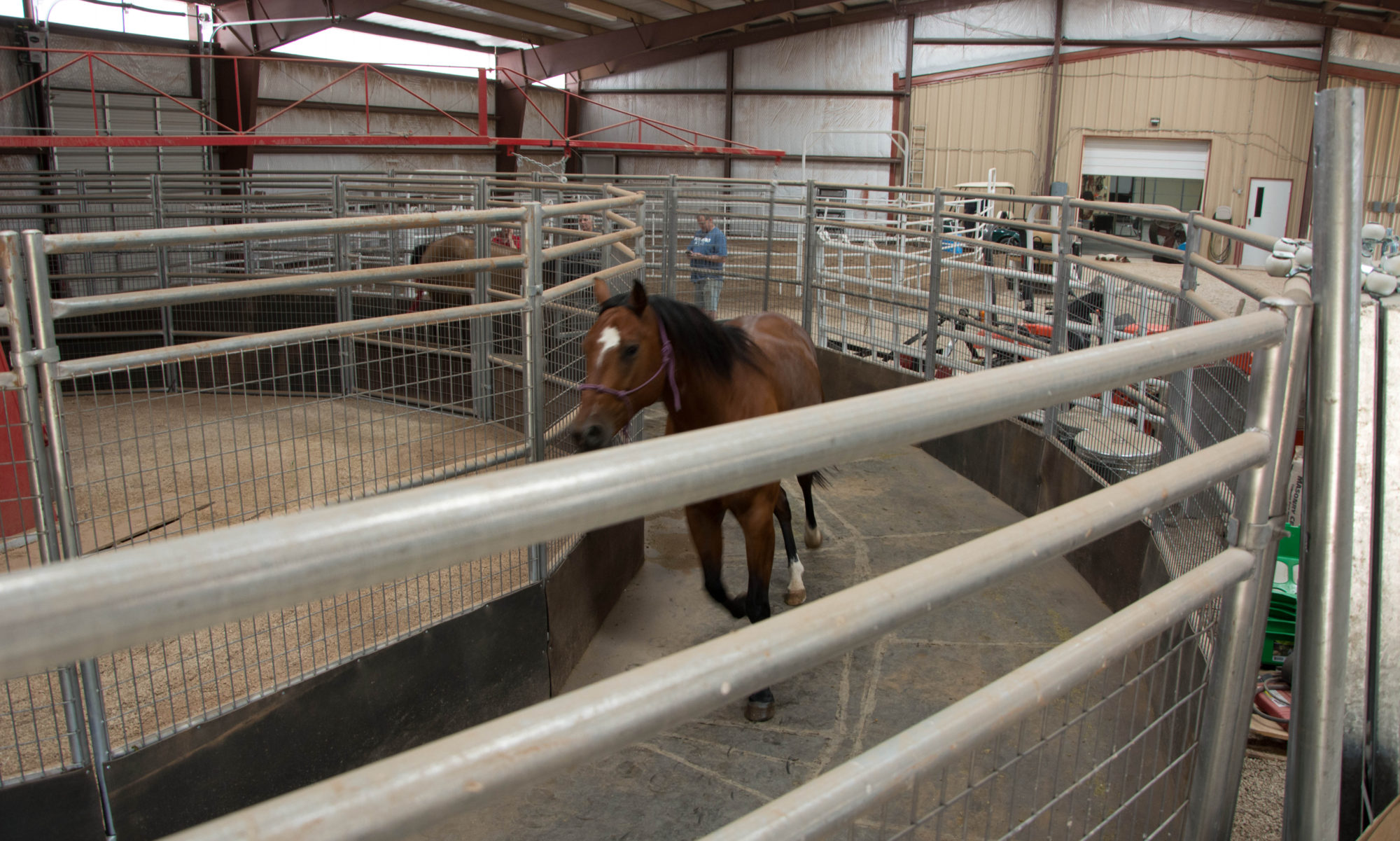 Bar L Equine Conditioning Center, LLC